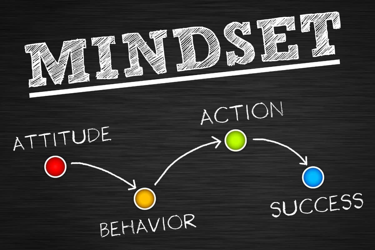 Mindset Factors In Professional Success